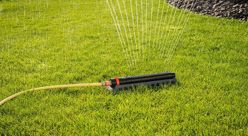 Rasen Bewässern im Sommer