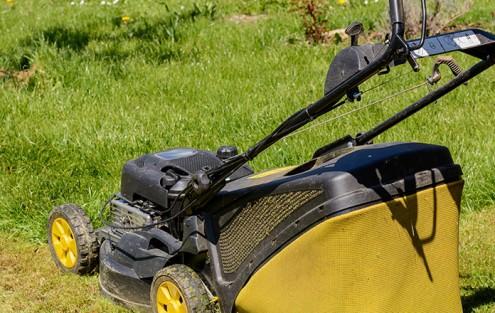 Rasenmäher, Rasenschnitt